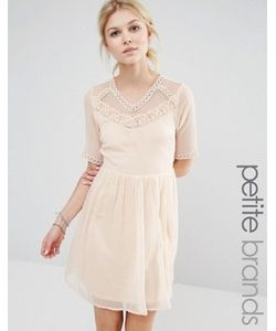Vero Moda Petite | Короткое Приталенное Платье С Сетчатой Кокеткой