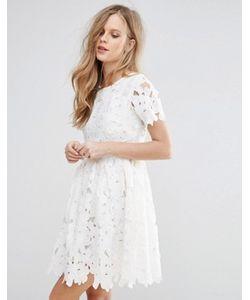 Glamorous | Короткое Приталенное Платье Из Кружева