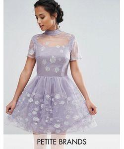 Chi Chi Petite | Короткое Приталенное Платье Для Выпускного Из Сетки С Цветочной Вышивкой Chi