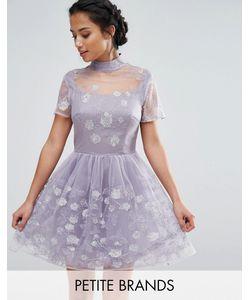 Chi Chi Petite   Короткое Приталенное Платье Для Выпускного Из Сетки С Цветочной Вышивкой Chi