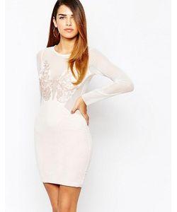 TFNC | Облегающее Платье С Сетчатыми Рукавами И Аппликацией Спереди