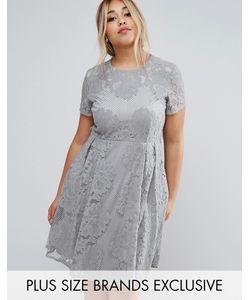 Little Mistress Plus | Кружевное Короткое Приталенное Платье С Короткими Рукавами