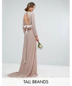 TFNC Tall | Кружевное Платье Макси С Бантом Сзади Wedding