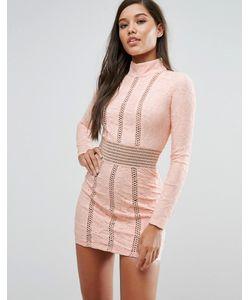 Rare | Кружевное Платье-Футляр С Сетчатыми Вставками London