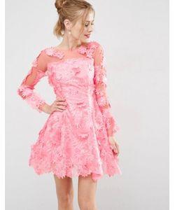 Asos | Короткое Приталенное Платье Из Кружева С Цветами 3d От Salon