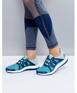 Adidas | Голубые Кроссовки Training Pureboost Xpose