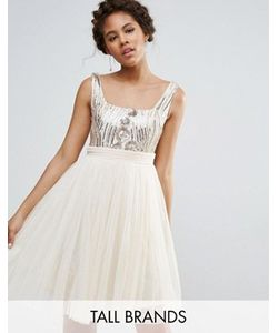 Little Mistress Tall   Тюлевое Платье Для Выпускного С Пайетками На Топе