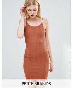 Boohoo Petite | Облегающее Платье