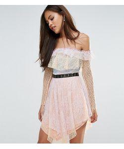 True Decadence Tall | Кружевное Платье Мини С Открытыми Плечами И Поясом