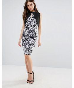 Vesper | Платье-Футляр С Контрастными Рукавами И Цветочным Принтом