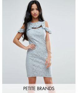 Miss Selfridge Petite | Кружевное Платье Мини С Открытыми Плечами