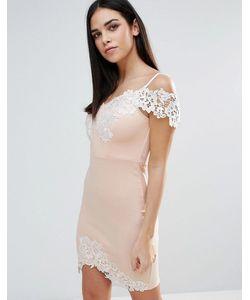 Lipsy | Облегающее Платье С Кружевной Вставкой