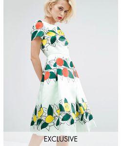 Horrockses | Платье Миди Lucille Мятно-Фруктовый Принт