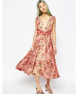 Asos | Платье Миди Для Выпускного С Цветочным Принтом И Эффектом Омбре