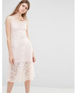 Body Frock | Свадебное Платье Dahlia Blush