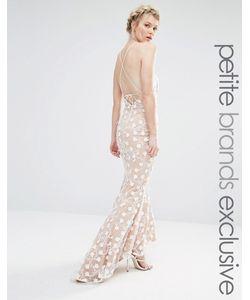 Jarlo Petite | Кружевное Платье Макси С Завязкой На Шее И Лямками На Спине