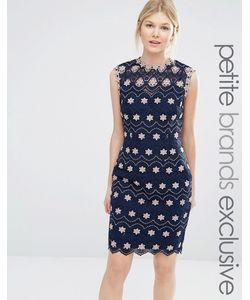 Paper Dolls Petite | Платье-Футляр С Высокой Горловиной И Контрастным Цветочным Кружевом