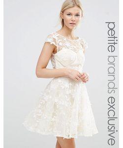 Chi Chi Petite   Короткое Приталенное Платье С 3dаппликацией Chi Chi London Petite Кремовый