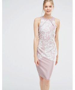 Closet London | Облегающее Платье С Кружевным Принтом Closet