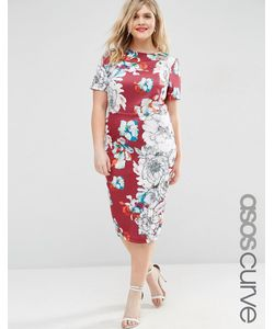 ASOS CURVE   Облегающее Платье Миди С Цветочным Принтом Мульти
