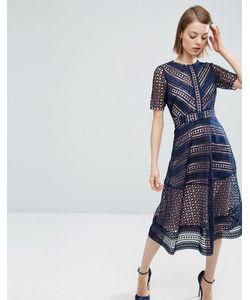 Asos | Нарядное Кружевное Платье Миди Premium Темно-Синий