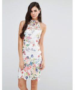 Lipstick Boutique | Платье С Высокой Горловиной Из Цветочного Кружева Мульти