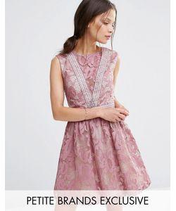 Little Mistress Petite | Кружевное Приталенное Платье Без Рукавов Mauve
