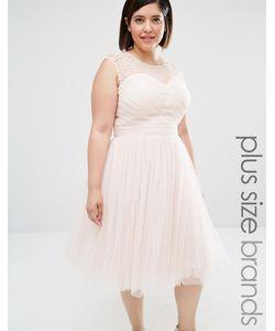 Little Mistress Plus | Платье Для Выпускного С Отделкой Телесный
