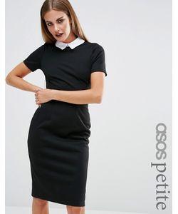 ASOS PETITE   Bodycon Dress With Contrast Collar Черный