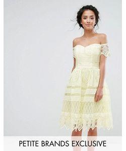 Chi Chi Petite   Кружевное Платье Миди С Открытыми Плечами