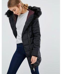 Puffa | Дутая Куртка Salcombe Черный
