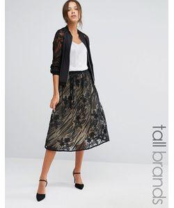 Little Mistress Tall | Full Lace Midi Skirt Мульти