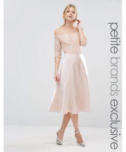 True Decadence Petite | Кружевное Платье Миди Для Выпускного