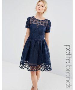 Chi Chi Petite   Кружевное Платье С Вырезной Отделкой И Короткими Рукавами Chi Chi London