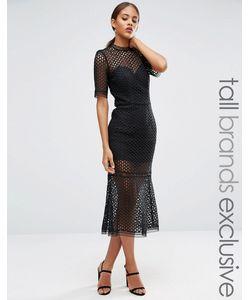 Jarlo Tall | Кружевное Платье Миди