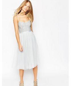 Needle & Thread | Балетное Платье С Декорированным Лифом Coppelia