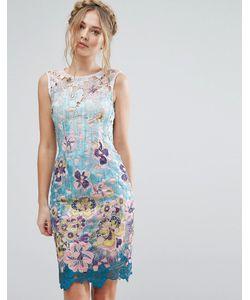 Paper Dolls   Кружевное Платье Миди С Цветочным Принтом