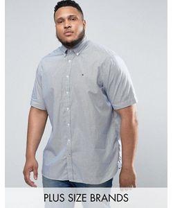 Tommy Hilfiger | Сине-Белая Рубашка В Полоску С Короткими Рукавами Plus
