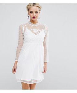 ASOS PETITE | Сетчатое Свободное Платье С Вышивкой