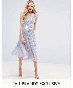 Little Mistress Tall | Платье Миди С Тюлевой Юбкой И Отделкой На Лифе Little Mistress