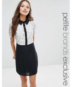 Fashion Union Petite   Трапециевидное Платье Мини 2 В 1 С Контрастным Кружевом Fashion Union