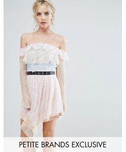 True Decadence Petite | Кружевное Платье Мини С Открытыми Плечами И Поясом Металлик True Decadence