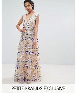 True Decadence Petite | Платье Макси С Цветочной Вышивкой Premium