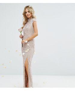 TFNC Petite | Кружевное Платье С Высокой Горловиной И Короткими Рукавами Wedding