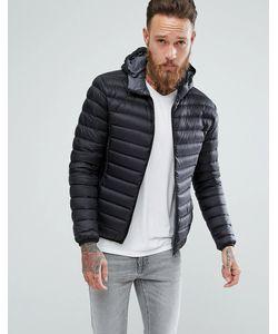 Schott | Черная Дутая Куртка Узкого Кроя С Капюшоном Silverado