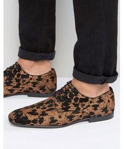 Asos | Замшевые Туфли На Шнуровке С Леопардовым Принтом