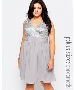 Lovedrobe | Короткое Приталенное Платье С Кружевным Топом Plus