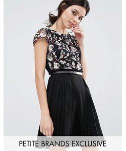Little Mistress Petite | Короткое Приталенное Платье Премиум С Вышивкой И Юбкой В Складку Little