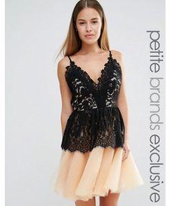 True Decadence Petite | Платье Для Выпускного С Кружевным Лифом И Юбкой Из Тюля True