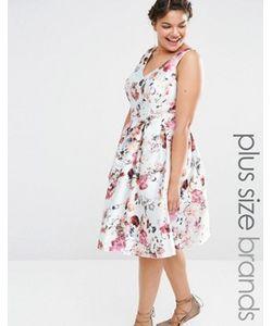 Chi Chi Plus | Короткое Приталенное Платье С Цветочным Принтом Chi Chi London Plus